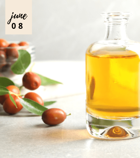EVERYTHING YOU NEED TO KNOW ABOUT JOJOBA OIL AND WHY YOU SHOULD START INCORPORATING IT IN YOUR BEAUTY ROUTINE NOW!